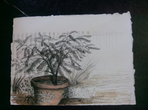 painting haslach's potted plant